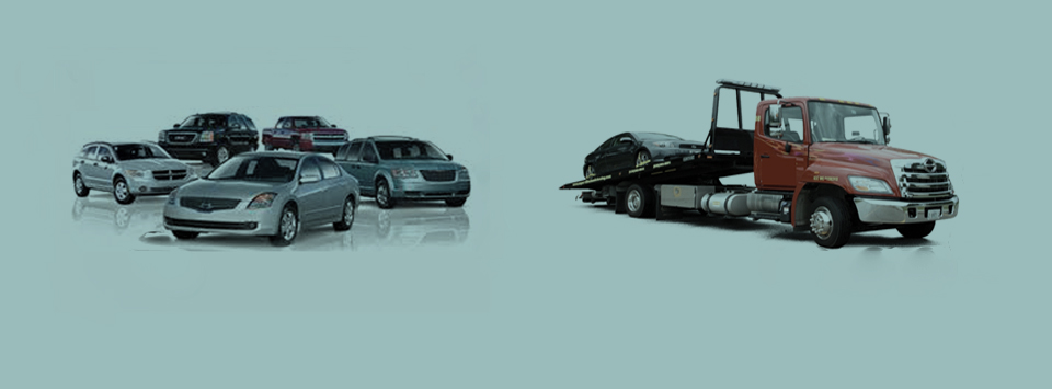 Bodytech is happy to arrange your Rental Car & Towing